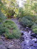 A quick photo of the creek