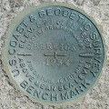 NGS Bench Mark Disk BERWICK