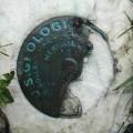 USGS Bench Mark Disk MERIDIAN MARK NORTH