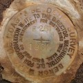NGS Bench Mark Disk F 281