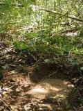 RM 1 was buried.