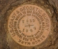 NGS Bench Mark Disk Y 235
