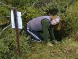 Zhanna, digging away.