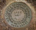 NGS Bench Mark Disk R 235