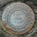 NGS Bench Mark Disk M 237