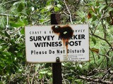 Witness post and sign.