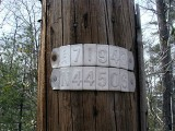 The mark is approximately 171 feet south along Route 402 from this pole (measured along the road shoulder).
