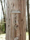 Utility pole ID numbers.