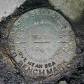NGS Bench Mark Disk X 255