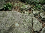 Eyelevel view of the mark on the boulder.