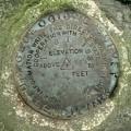USGS Bench Mark Disk TT 6 T