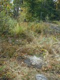 Looking W into the brush. Station is nearly flush with the ground.