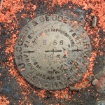 NGS Bench Mark Disk B 56