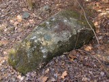 The disk set in top of the large boulder.