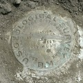 USGS Bench Mark Disk DLW 1889