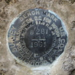 NGS Bench Mark Disk B 281
