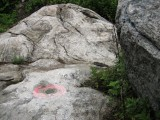 Eyelevel view of the disk on outcropping bedrock.