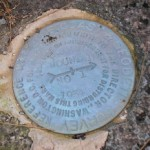 NGS Reference Mark Disk BROWN MOUNTAIN RM 1