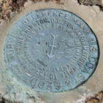 NGS Reference Mark Disk MARY RM 1