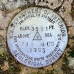 NGS Benchmark Disk 118 MLS