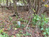 The concrete post is barely visible in the woods, but somehow Rich saw it from the road!