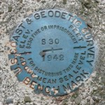 NGS Bench Mark Disk S 30