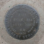 U.S. Forest Service Bench Mark Disk 5217