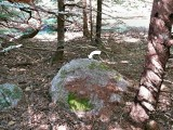 View of the entire boulder, mark indicated.