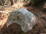Eyelevel view of the disk and boulder.