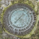 NGS Reference Mark Disk WEST PEAK RM 1
