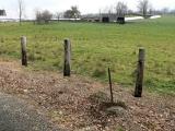 Looking SE toward field and farm.