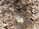 Eyelevel view of the reference mark disk on the outcrop