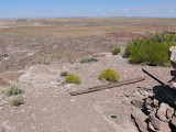 View from the station out over the Painted Desert landscape.
