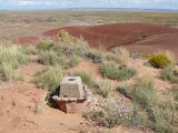 Looking out over the Painted Desert.