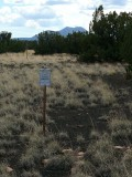 Looking approximately S toward one of the volcanic cinder cones (possibly Sunset Crater).
