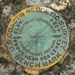 NGS Bench Mark Disk D 255
