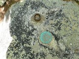 Eyelevel view of the triangulation station disk and a strange post in the boulder.