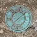 USGS Bench Mark Disk 42 DSW