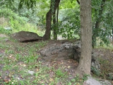 The boulder as I saw it when walking up the driveway.