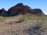 Looking N toward a park road and large redrock butte