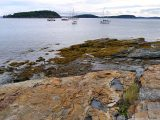 Looking N toward the bay
