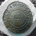 NGS Bench Mark Disk D 187