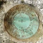 NGS Bench Mark Disk D 147