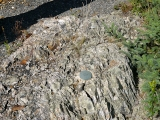 Eyelevel view of the disk on the rock outcrop.