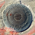 Florida DNR Bench Mark Disk 872 4332 G TIDAL