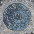 Florida DNR Bench Mark Disk 872 4375 F TIDAL
