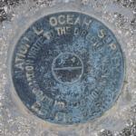 Florida DNR Bench Mark Disk 872 4375 F TIDAL