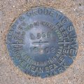 NGS Bench Mark Disk L 308