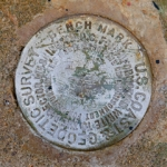 NGS Bench Mark Disk M 224