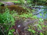 Looking S across Masthope Creek